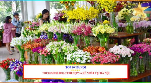 Shop hoa tưoi đẹp và rẻ nhất tại Hà Nội