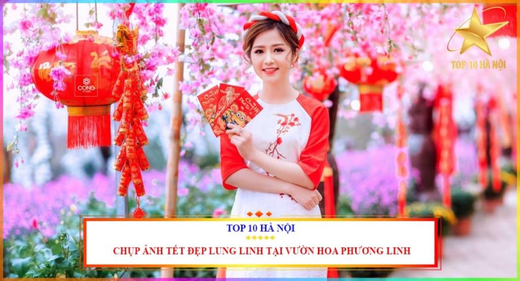 Chụp ảnh tết đẹp tại vườn hoa Phương Linh